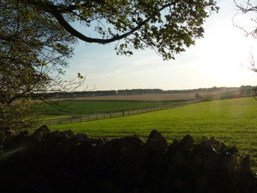 Cotswold-camping-view-across-cotswolds